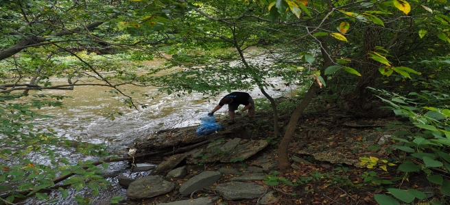 Rock Creek Socially-distant Cleanup, March 16 - May 15